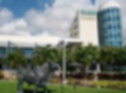 U South Florida SP.jpg