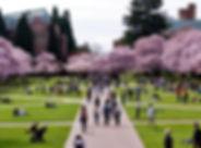 University of Washington.jpg