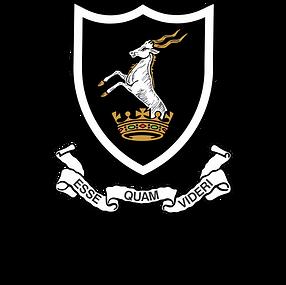 badge - black.png