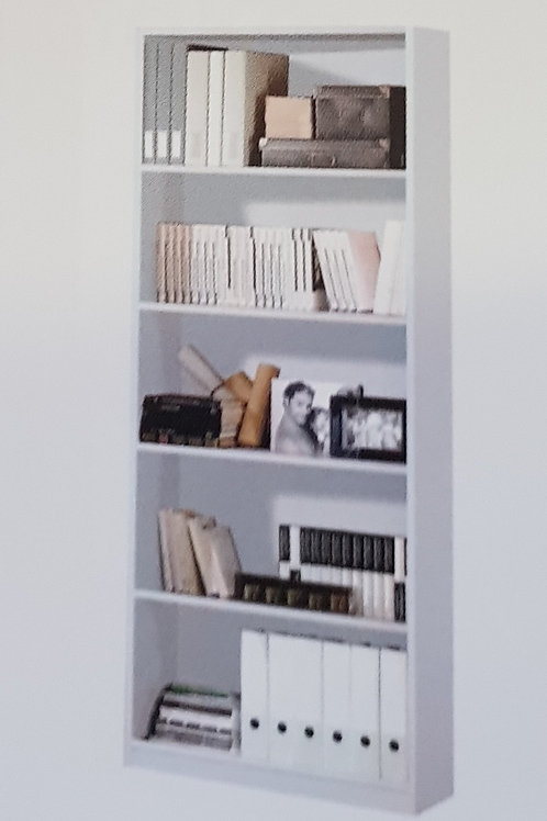 Arctic Bookcase and Shelves