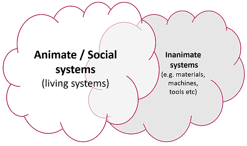 Social Systems.png