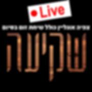 logo-live.jpg
