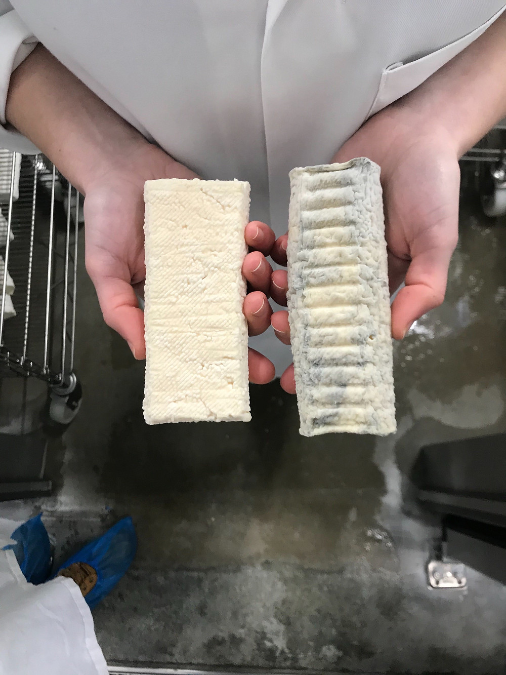 Cheese at different stages of maturing process