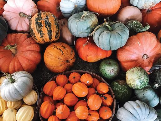 Halloween Pumpkin Tricks and Tips