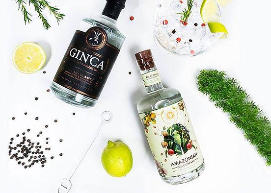 Eine Flasche Gin'Ca Gin & eine Flasche Amazonia Gin aus Peru.