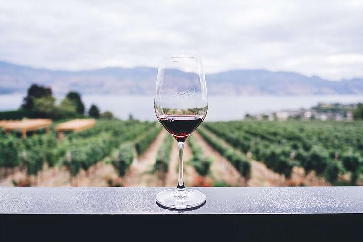 Glas Rotwein auf Weingut in Peru