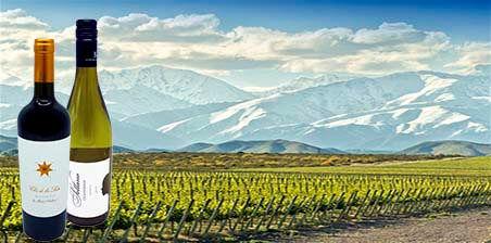 Argentinische Weine: Clos de los Siete von Bodegas Monteviejo und Chardonnay von Bodega Sottano erhältlich bei VINOS LATINOS