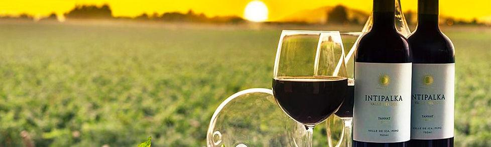 Weingeschichte Peru - VINOS LATINOS.jpg