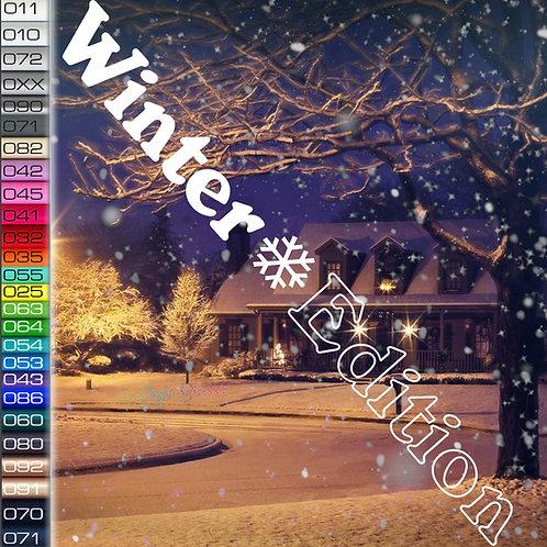 Winter Edition Flocke Autoaufkleber W84