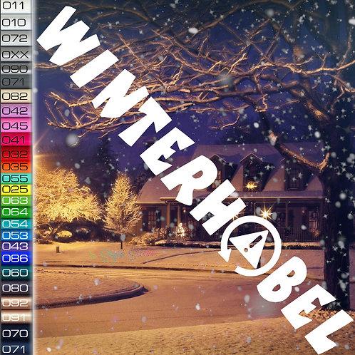 Winterhobel Winterauto Aufkleber Motiv W11