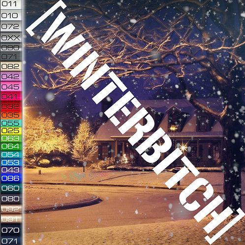 Winterbitch Winterauto Aufkleber Motiv W3