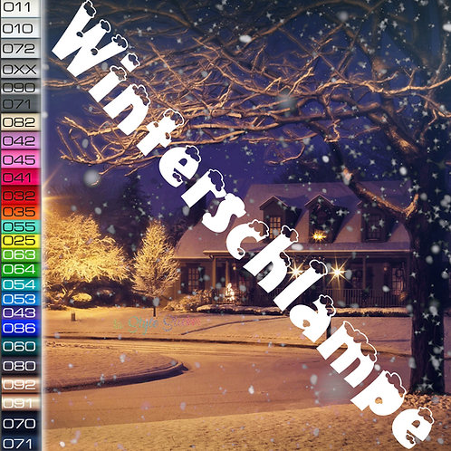 Winterschlampe Winterauto Aufkleber Motiv W38