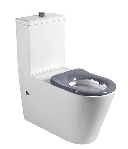 Extracare Disabled Wall Faced Toilet Suite