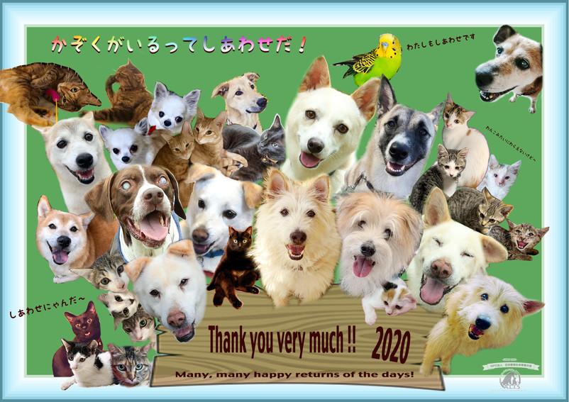 Thankyou2020.jpg