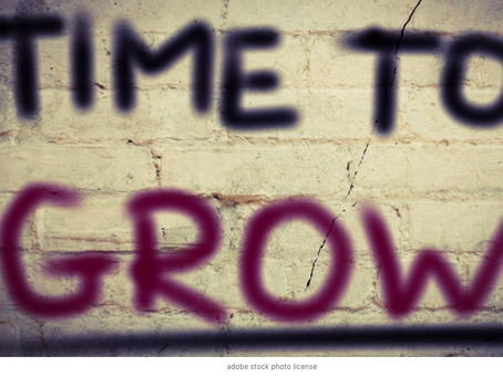 wellcoaches habits: time to grow faster