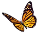 kisspng-monarch-butterfly-insect-clip-ar