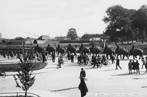 Circus Gleich Olifantenoptocht 1925