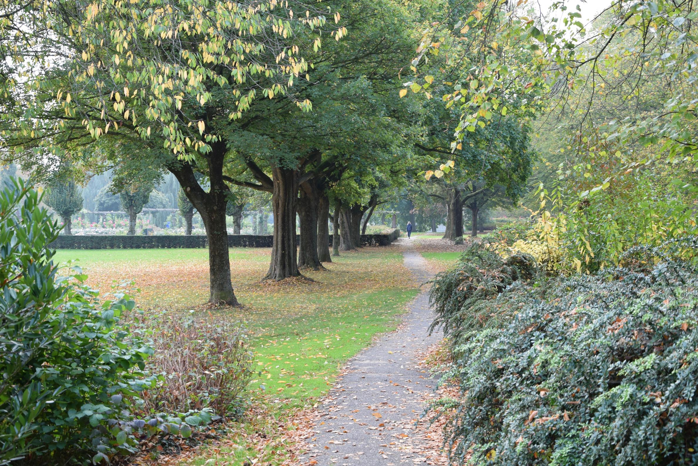 oosterpark_frans_geubel (5)
