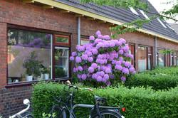 oosterpark_frans_geubel (84)
