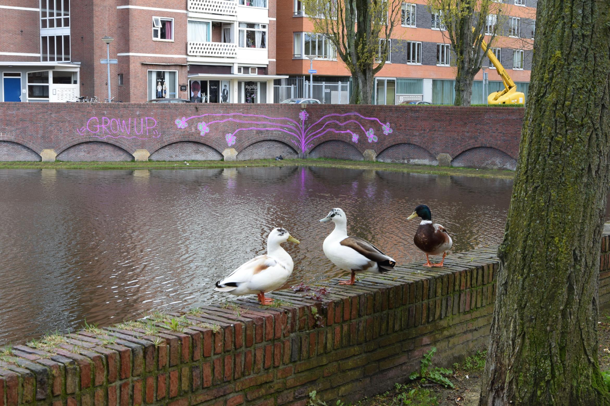 oosterpark_frans_geubel (27)