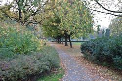 oosterpark_frans_geubel (11)