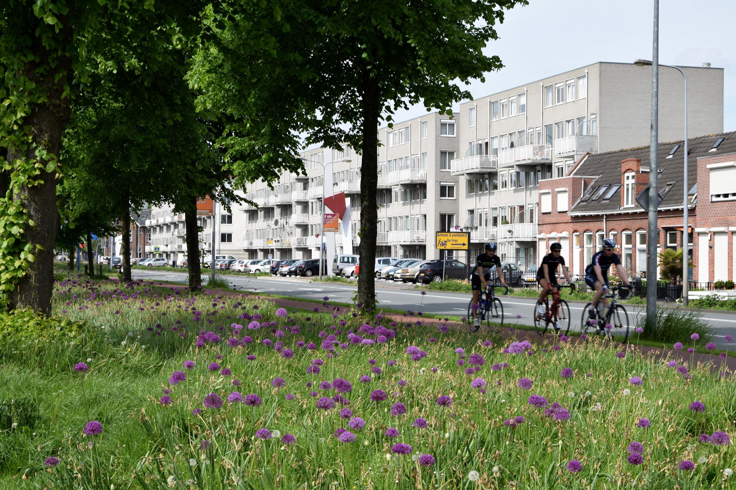 oosterpark_frans_geubel (65)