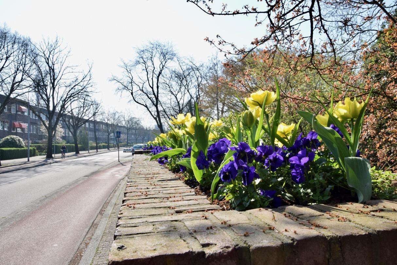 april_frans_geubel (5)