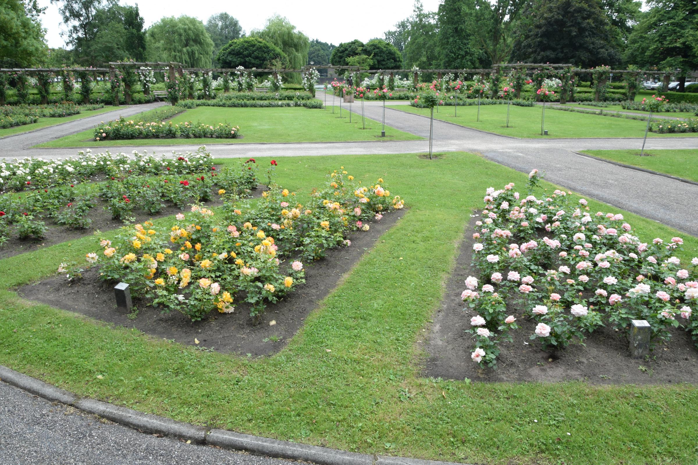 oosterpark_frans_geubel (24)