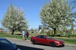 oosterpark_frans_geubel (66)
