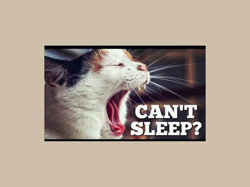 What is Stopping You from Sleeping? 5 Key Factors