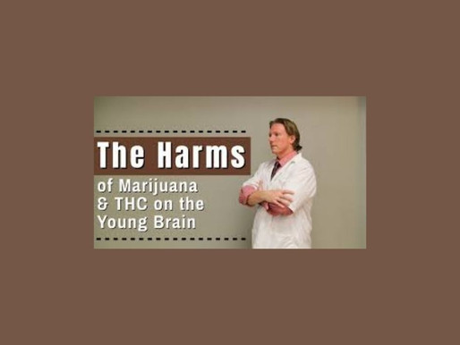 The Harms of Marijuana & THC on the Young Brain