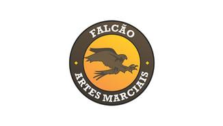 Falcão Artes Marciais