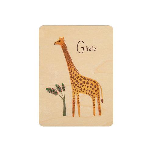 ABC girafe