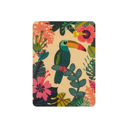 ABC toucan
