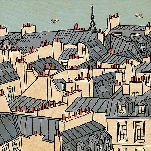45T toits de Paris