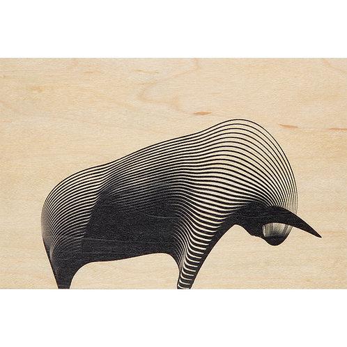 WOODHI - bull