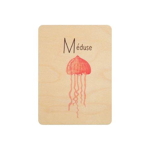 ABC méduse
