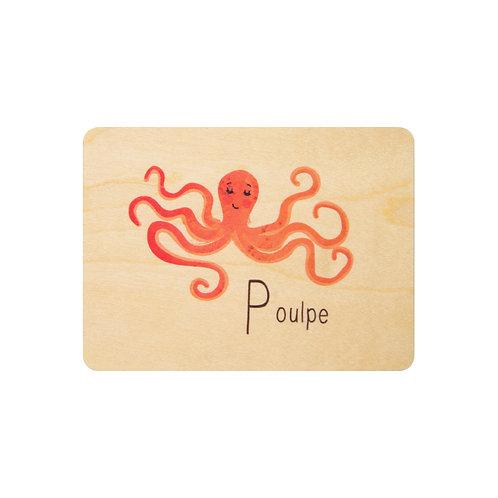 ABC poulpe