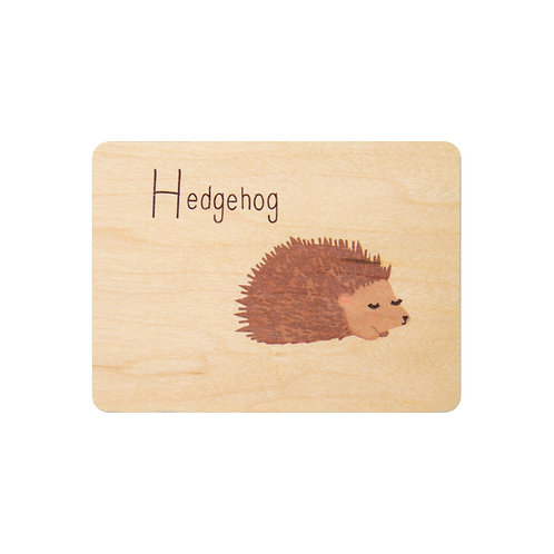 ABC hedgehog