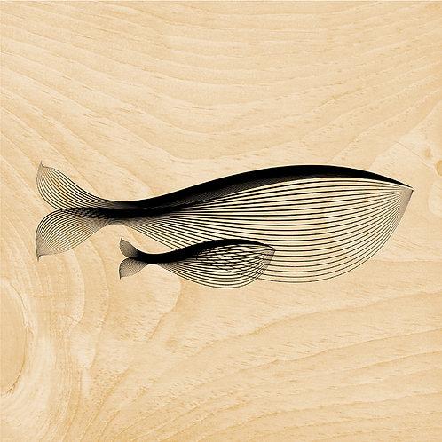 45T whale