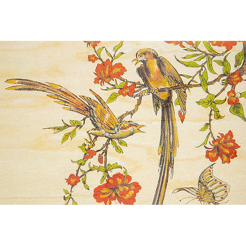 bnf 2 birds