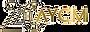 aycm20_logo2.png