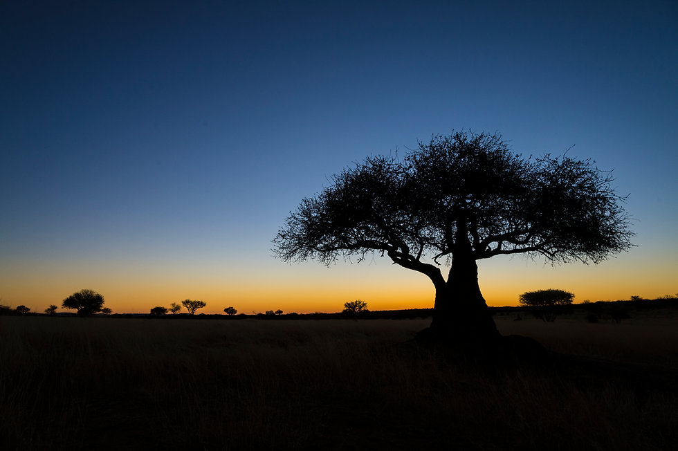 bynum-opre-africa-4279.jpg
