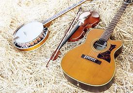 Fiddlesticks Bluegrass at Frog Hollow Fa