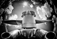06 Aviator