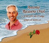 Mod 5034 Playa y Rosa Color.jpg