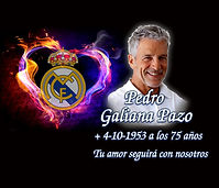 Mod 5030 Escudo Real Madrid.jpg