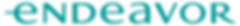 endeavor-logo-teal (2).png