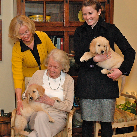 resident-with-puppies