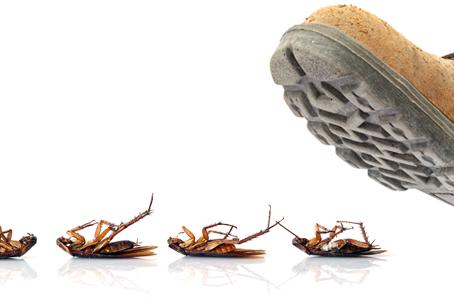 The Bug Bounty Hunter and The New Zero-Day Exploit Economy